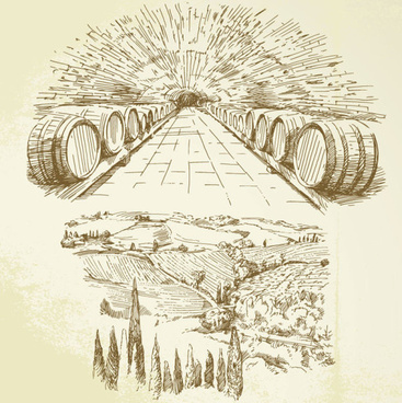 hand drawn harvest vineyard elements vector