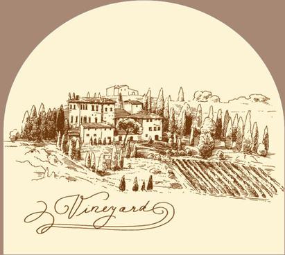 hand drawn harvest vineyard elements vector