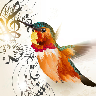 Hummingbird vector free free vector download (31 free vector) for.