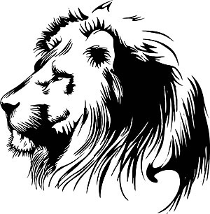 hand drawn lion head vector graphic