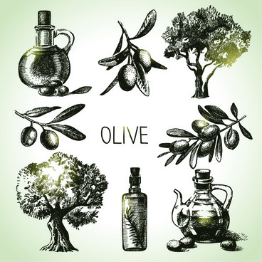 hand drawn olive elements vector icons