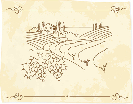 hand drawn retro vineyard elements vector