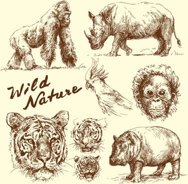 hand drawn wild animal design vectors