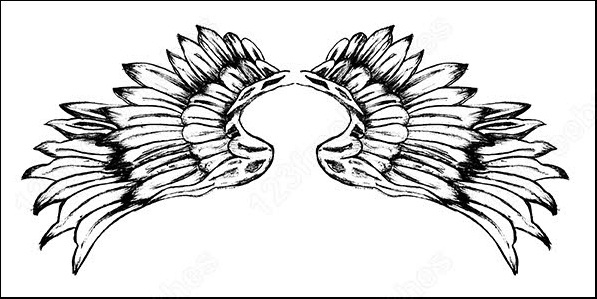 hand drawn wings free vector and photoshop brush