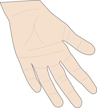 Hand Palm clip art