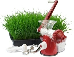 Hand wheatgrass juicer