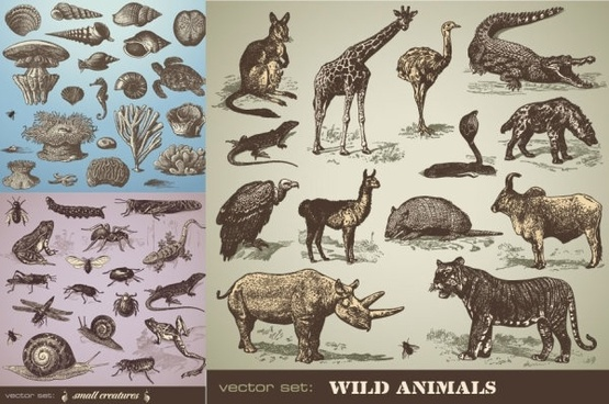 handpainted animals vector