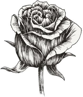 handpainted flowers 05 vector