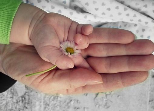 hands love hand
