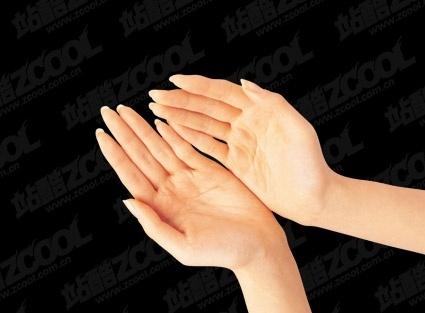 hands psd 5