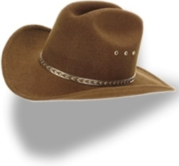 Hat cowboy brown