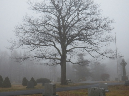haunted graveyard 2