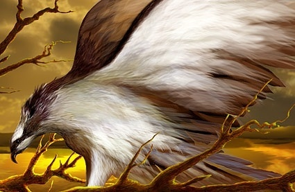hawks psd layered