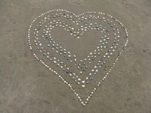 heart shell beach