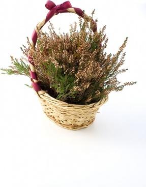 heather basket