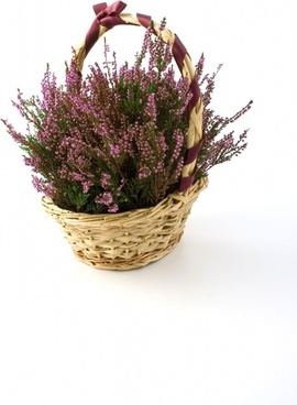 heather basket