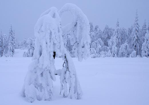 heavy snow 1