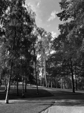 helsinki finland landscape