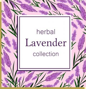 herbal background violet lavender icons repeating design