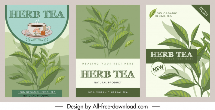 herbal tea advertising background classic handdrawn decor