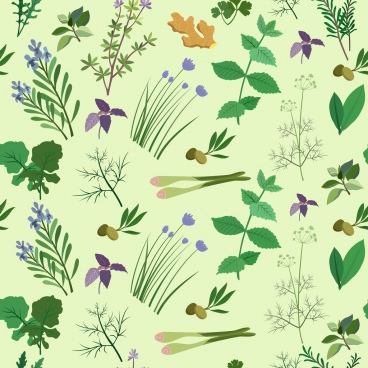 herbs background multicolored icon decoration repeating design