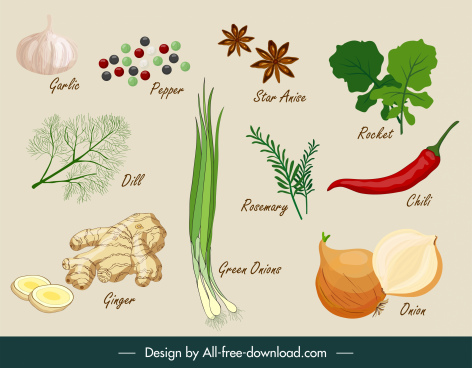 herbs ingredients icons colored classical handdrawn