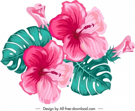 hibiscus flower icon colorful classical design
