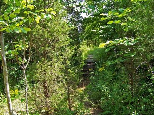 hidden stair steps