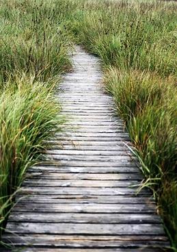 high fens away plank road