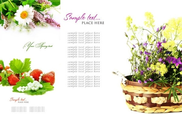 highquality pictures of beautiful flowers background pattern 1