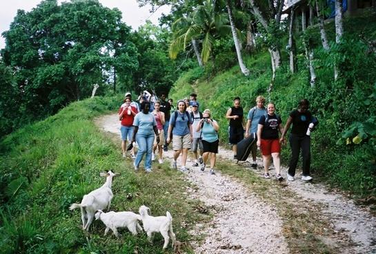 hiking jamaica