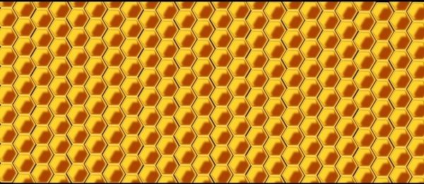 hive wax bee