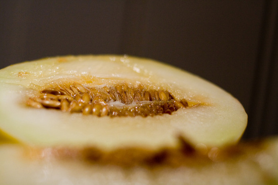 honeydew melon aka alien lifeform