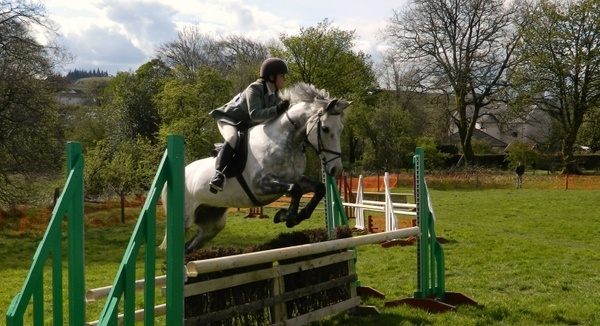 horse rider show