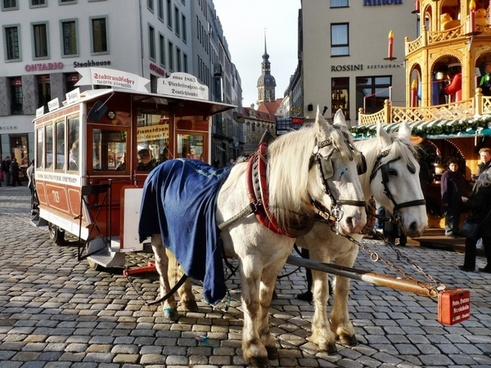 horse-drawn carriage carriage rides neumarkt