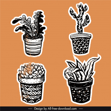 houseplant icons classical black white handdrawn sketch