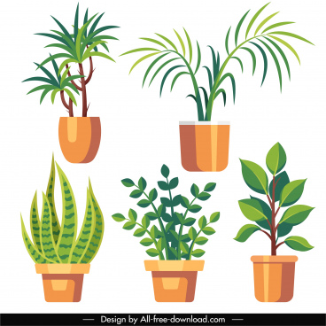 houseplant icons colored flat sketch
