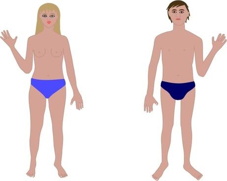 Human body, man and woman