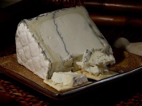 humboldt fog cheese blue mold mold