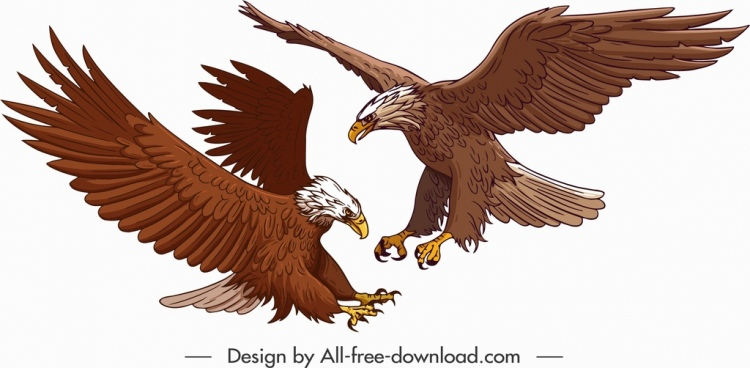 hunting eagle painting colored cartoon sketch