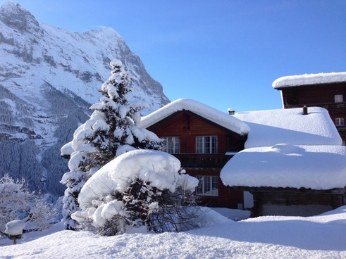 hut mountain hut snowy