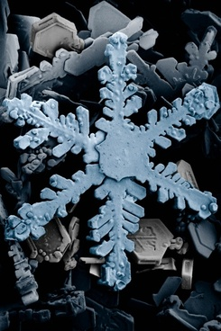 ice crystal crystals snow