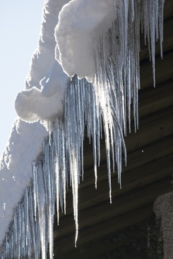 ice icicle cold