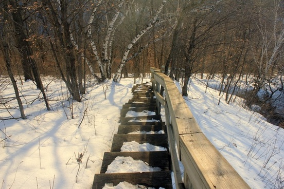 icy staircase at john a latsch state park minnesota