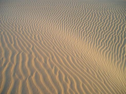 india desert sand