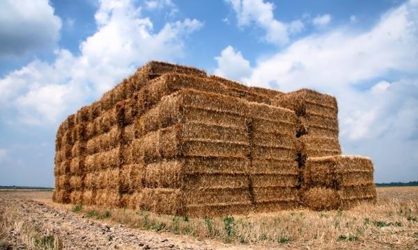 indiana straw bales
