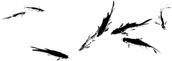 ink fish psd