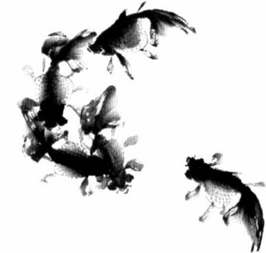 ink fish psd 9