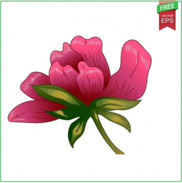 ink vector red peony free download floral botanical flower wild sprin