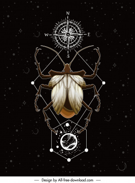 insect background beetle compass sketch symmetric design